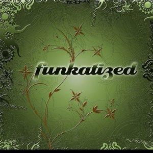 Image for 'Funkatized Album Teaser'