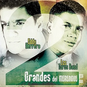 Image for '2 Grandes del Merengue Vol. 4'
