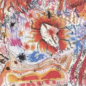 Immagine per 'The Flood'