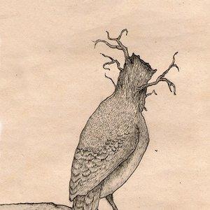 Image for 'Idioma de los libros'