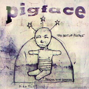 Image for 'The Best of Pigface: Preaching to the Perverted'