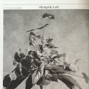 Imagen de 'Olympisk Løft'