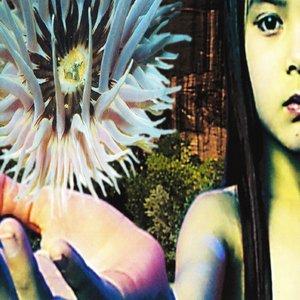 Bild för 'Lifeforms [Disc 2]'