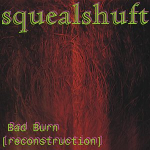 Image for 'Bad Burn [reconstruction]'