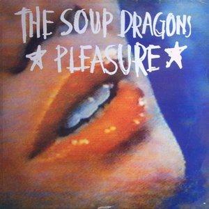 Image for 'Pleasure'