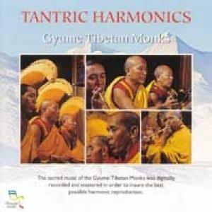 Bild für 'Tantric Harmonics'