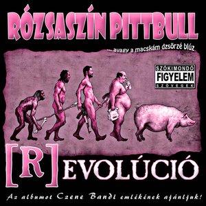 Bild für '(R)Evolúció'
