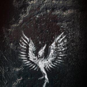 Bild für 'Rise'
