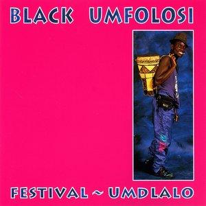 Image for 'Festival - Umdlalo'