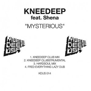 Image for 'Knee Deep Feat. Shena'
