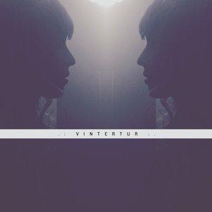 Image for 'VINTERTUR'