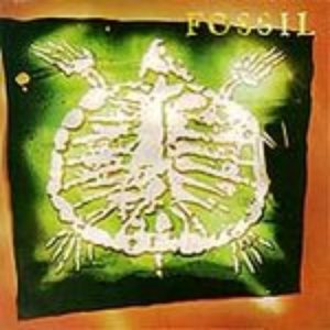 Image for 'Fossil'