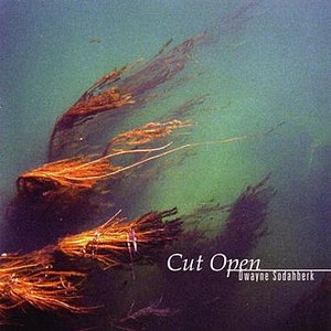 Image for 'Cut Open'