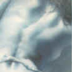 Bild für 'Beautica'