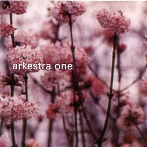 Image for 'Arkestra One'