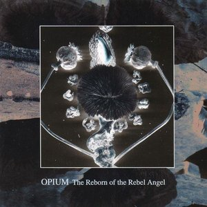 Image for 'The Reborn Of The Rebel Angel'