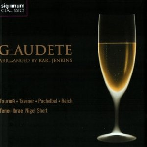 Image for 'Gaudete - Arranged By Karl Jenkins'