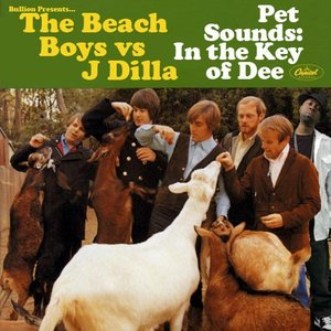 Image pour 'Pet Sounds: In The Key Of Dee'