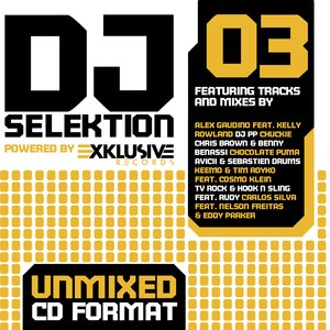 Image for 'DJ Selektion 03'