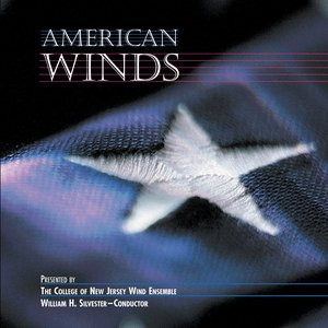 Image for 'American Winds'