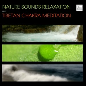 Immagine per 'Nature Sounds Relaxation and Tibetan Chakra Meditation - Music for Relaxation Meditation, Deep Sleep, Studying, Healing Massage, Spa, Sound Therapy, Chakra Balancing, Baby Sleep and Yoga'