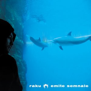 Bild für 'emite semnale'