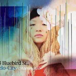 Image for '23 Bluebird Street, Velo-City'