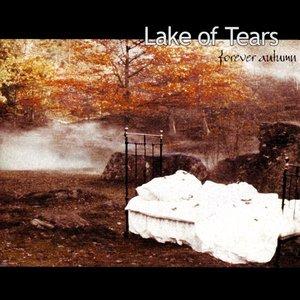 Bild för 'Forever Autumn'