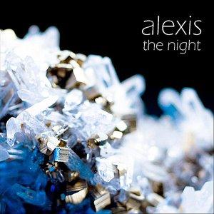 Bild für 'The Night'