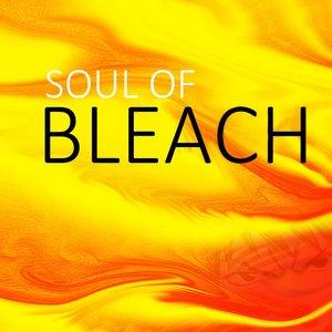 Image for 'Soul Of Bleach'