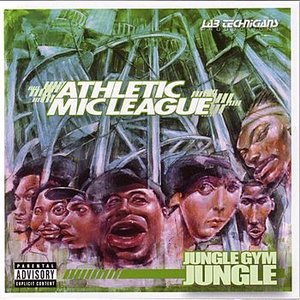 Image for 'Jungle Gym'
