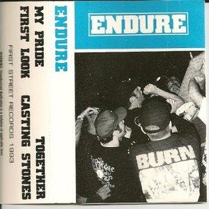 Image for 'Endure'