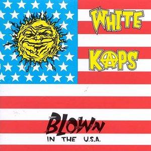 Bild für 'Blown In The U.S.A.'