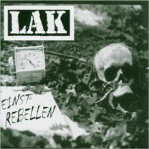 Image for 'Einst Rebellen'