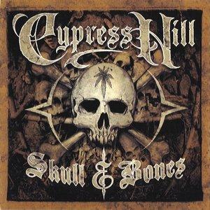 Image for 'Skull & Bones (disc 1: Skull disc)'