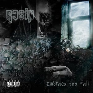 Image for 'Embrace The Fall'