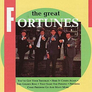 Image for 'The Great Fortunes'