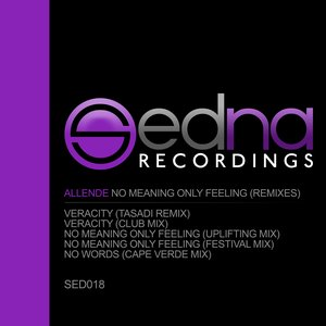 Image for 'No Meaning Only Feeling (Remixes)'
