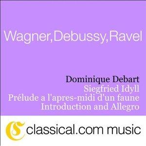 Image for 'Richard Wagner, Siegfried Idyll'