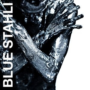 Image for 'Blue Stahli'