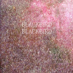 Image for 'Blackbird Blackbird'
