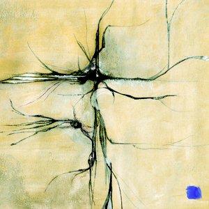 Image for 'Sincère Autopsie De La Finesse'