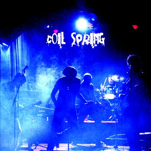 Image for 'Coil Spring'