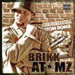 Image for 'Brikk Atomz'