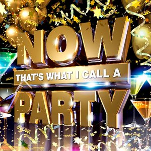 Immagine per 'Now That's What I Call A Party'