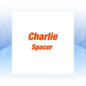 Image for 'Spacer'