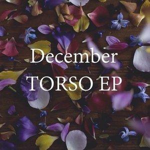 Image for 'TORSO EP'