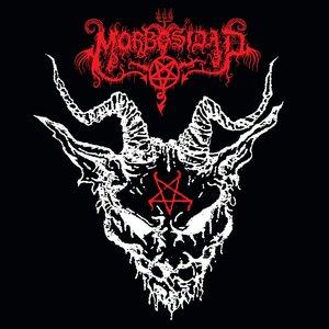 Immagine per 'Morbosidad'