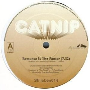 Image pour 'Romance is the Panter'