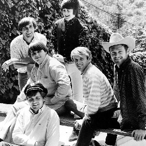 Image pour 'The Beach Boys'